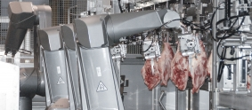 csm_robotics-solutions-food-transformations-protein-success-story-Mayekawa-hip-2x-38084-jpg-orig_fc03520431.jpg